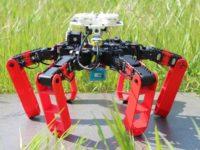 Antbot, el primer robot andante que se mueve sin GPS