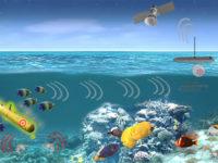 Detección de Actividad Submarina mediante el Análisis de Comportamientos de Organismos Marinos